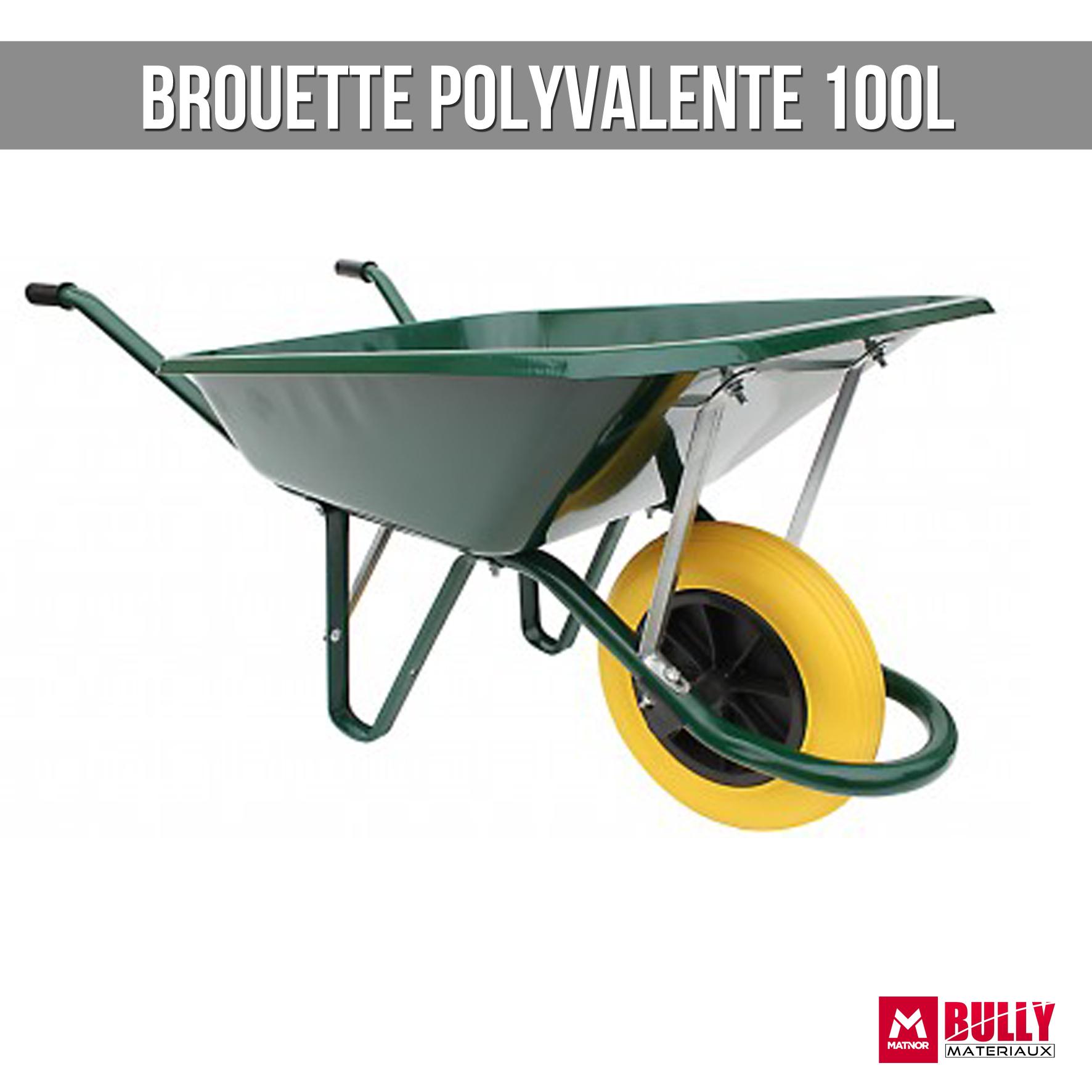 Brouette polyvalente 100l